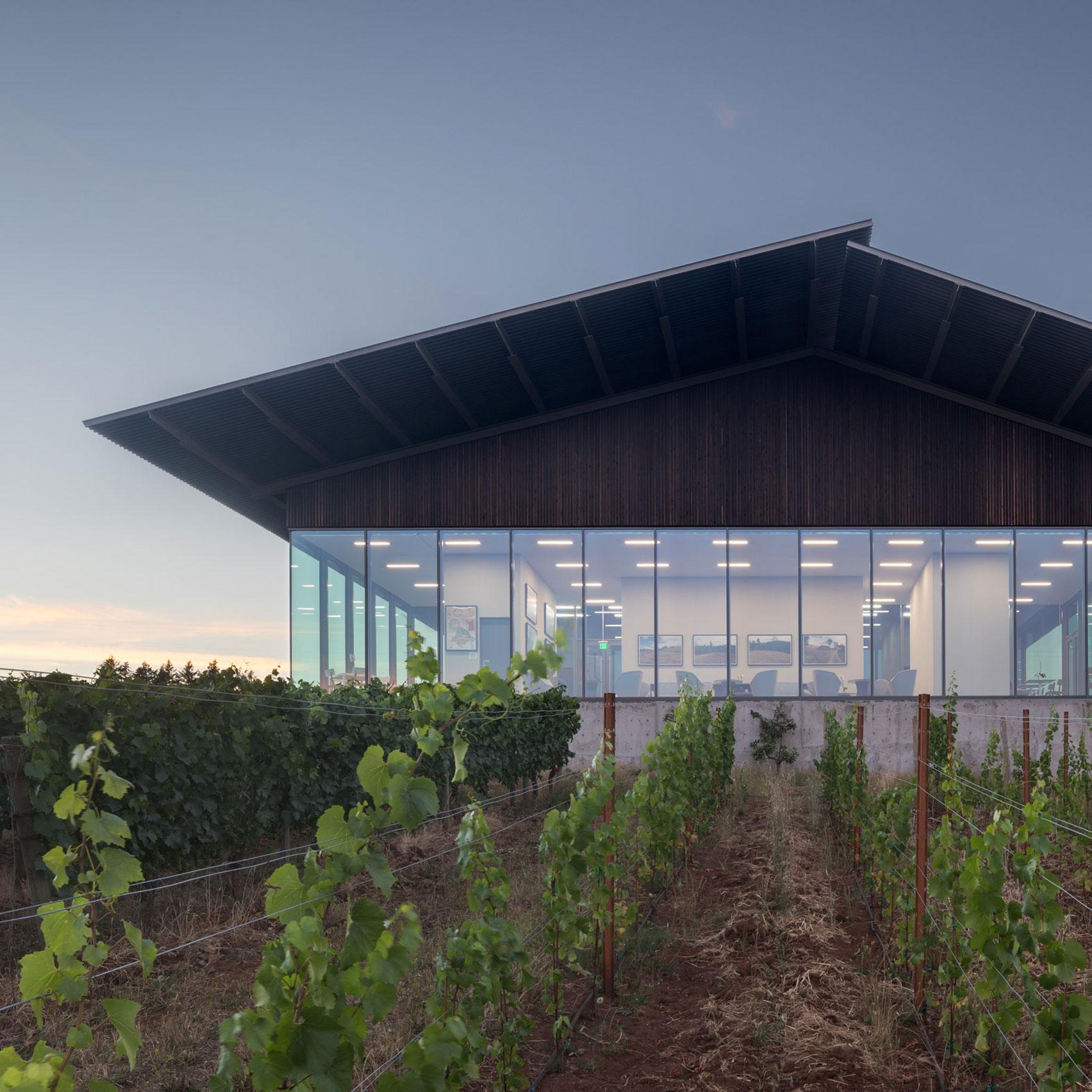 Furiosos Vineyards by Waechter Architecture